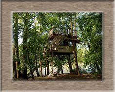 Treehouse camping on the Shenandoah
