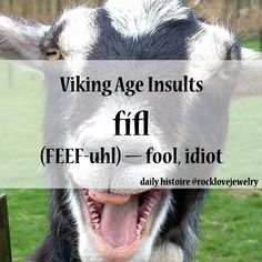 A good insult to an immature juvenile who dare insult me. They use #yolo, I use fifl.