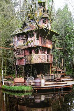Treehouse Above San Francisco Bay