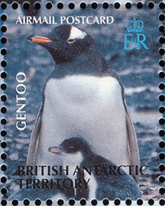 Gentoo Penguin stamps - mainly images - gallery format