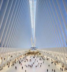 World Trade Center Transportation Hub de Calatrava pelas lentes de Hufton+Crow,©…
