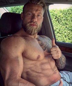 Bearded : Photo