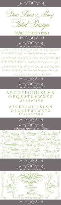 Dom Loves Mary Total Design Font. Script Fonts. $109.00