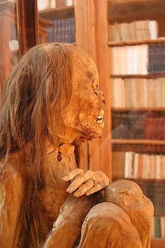 Mummy (Emmanuelm) -  The color of hair comes from the mixture of two melanin pigments: eumelanin (yellow-brown-black) and pheomelanin (red). Pheomelanin is more stable, so over time the eumelanin oxidizes while most of the pheomelanin remains. This is reason most Egypian mummies appear to have reddish hair. The change occurs more slowly under dry oxidizing conditions, such as burials in ice or sand, than under wet reducing conditions, such as burials in wooden coffins or damp caves.