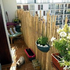 Bamboo balcony privacy screen – ideas with plants, carpets and bars