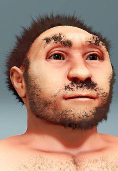 Homo erectus pekinensis, forensic facial reconstruction