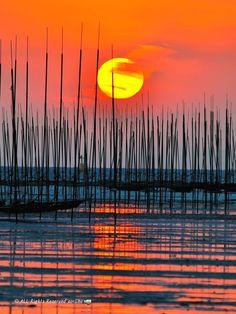 Sunset in Nagasu harbor, Tamana District, Kumamoto, Japan Kumamoto, Kyushu, Beautiful Sunset, Beautiful World, Beautiful Places, Silhouettes, Cool Pictures, Beautiful Pictures, Japanese Culture