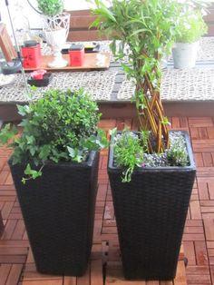 Garden. Plants&Flower. SIMPLE. Pretty. Like.
