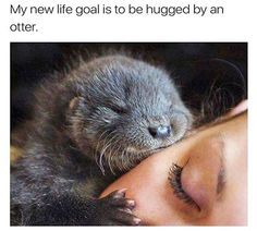 Cute Feel Good Wholesome Meme Dump - 4