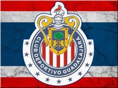 Club Chivas-Liga MX Club Chivas, Chivas Wallpaper, Rare Pokemon Cards, Football Mexicano, Small Canvas Paintings, Casino Logo, Mexico Travel, Porsche Logo, Real Madrid