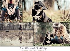 Warrington Dog Photo Shoot with Alex & Tessa…. | Horses and pets photography blog by Sue Westwood-Ruttledge