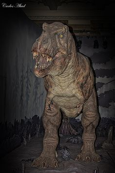 Tiranosaurio Rex - Museo de historia natural Londres by Abadgg, via Flickr