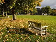 size: Photographic Print: The Dartmouth College Green in Hanover, New Hampshire, USA by Jerry & Marcy Monkman : Travel Yosemite National Park, National Parks, Affordable Wedding Venues, College Campus, Ways Of Seeing, New Hampshire, New England, Life Is Good