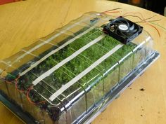 Hydroponic Gardening Ideas How to Make a Mini Automated Greenhouse for Microgreens