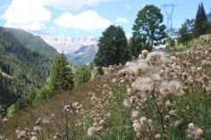 We're just back from an amazing few days spent high up in the Marmolada mountain range of the world famous Dolomites,...
