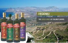 Extra Virgin Olive Oils - DOP e IGP -