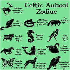 I love Seahorses:-)