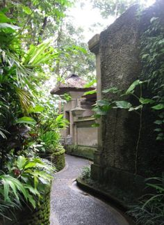 Royal Pita Maha @Ubud Bali: The Guide Bali: The Guide,Bali