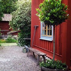 Although old inside principle, a pergola continues to be experiencing somewhat of a contemporary renaissance Swedish Cottage, Red Cottage, Garden Cottage, Swedish House, Home And Garden, Red Houses, Porche, Outdoor Living, Outdoor Decor