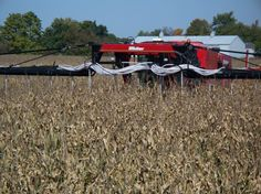 MillerNitro modifications to seed cover crop into late season corn.   Equipment modfications and  photo credit:  Mike Shuter, Shuter Sunset Farms