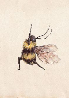 Yoga Illustration, Bumble Bee Illustration, Watercolour Illustration, Ink Illustrations, Honey Bee Drawing, Bumble Bee Tattoo, Honey Bee Tattoo, Wings Drawing, Bee Art