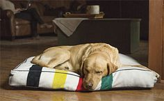 Orvis and Pendleton partnered to create this commemorative polar fleece dog bed design.