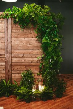 Indoor ceremony backdrop with ferns - close-up view!