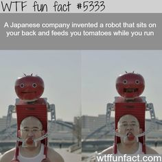 Weird inventions that you would see only in Japan! - Tomatoes?   ~WTF? weird & fun facts