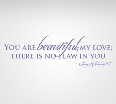 """Song of Solomon 4:7     """"You Are Beautiful, My Love, There Is No Flaw In You"""""""