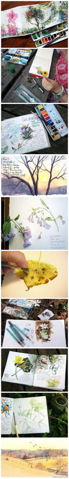 欣赏~  Watercolor with pressed flowers. Gorgeous
