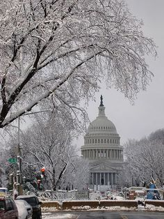 Christmas in DC - love