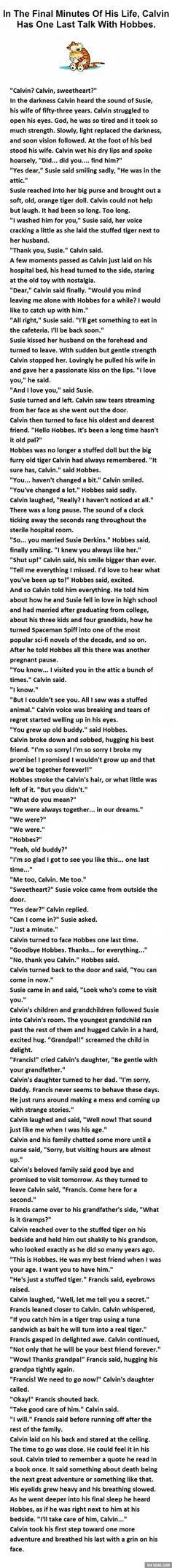 Calvin And Hobbes... It's Beautiful...