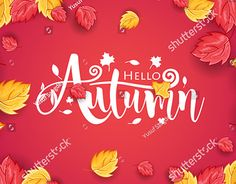 "Check out new work on my @Behance portfolio: ""Autumn and Thanksgiving Day Vector Background"" http://be.net/gallery/57593557/Autumn-and-Thanksgiving-Day-Vector-Background"