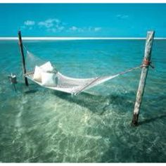 I want to be right here taking a nap or reading a good book. Or drinking me a nice drinkie drink.