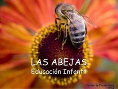 LAS ABEJAS Educación Infantil Esther de Frutos Sanz