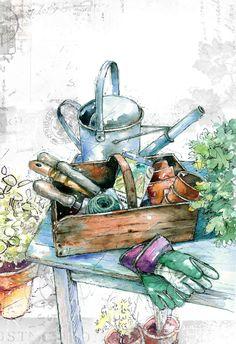 Harrison Ripley - Watering Can .jpg