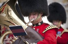 Tuba Player with the Regimental Bands of the Household Divison