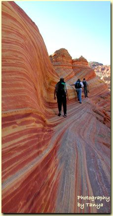 One of my most favorite experiences in life!!!  Hiking The Wave, a very remote hike along the Utah/AZ border.