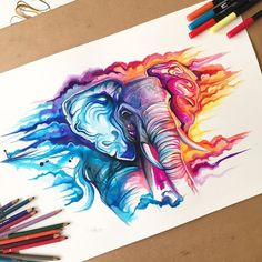 Watercolor elephant more water color elephant, colorful elephant tattoo, el Colorful Drawings, Cool Drawings, Colorful Tattoos, Colorful Animal Paintings, Elephant Tattoos, Colorful Elephant Tattoo, Color Pencil Art, Animal Drawings, Animal Illustrations