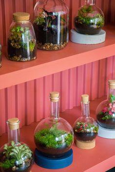 Discover This Terrarium Vintage Store in South of London Terrarium Shop, Terrariums, Eclectic Restaurant, Mid Century Lighting, Vintage Bottles, South London, Bottles And Jars, New Living Room, Vintage Decor