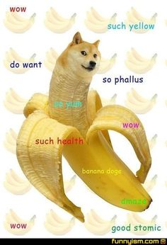 "So Doge, Very Meme: 15 Very Funny Memes About ""Doge"": So Doge, Very Meme: 15 Very Funny Memes About ""Doge"""