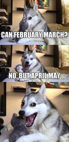 Monthly pun.