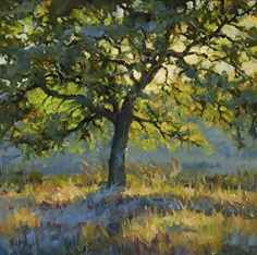 Afternoon Glow by Robert Rohm Oil ~ 20 x 20