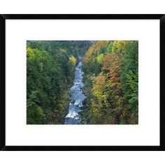 Global Gallery Ottauquechee River and Quechee Gorge, Vermont by Tim Fitzharris Framed Photographic Print Size: