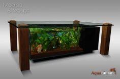 Aquarium colonne dangle design bermudes | aquariums signés aquaniman ...