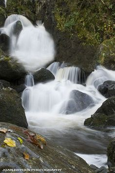 Lodore Falls, Keswick in the Lake District National Park, Cumbria, England