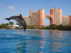 Atlantis Nassau Bahamas | Excel Tours Cadereyta: Hotel Atlantis Nassau Bahamas