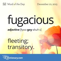 Dictionary.com's Word of the Day - fugacious - Lasting but a short time