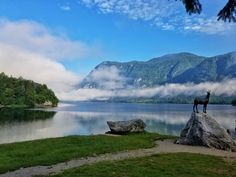 Lake Bohinj in Slovenia - Lake Bled's lesser known neighbor #travel #photography #nature #photo #vacation #photooftheday #adventure #landscape