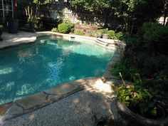 swimming pools that look like ponds   swimming pool